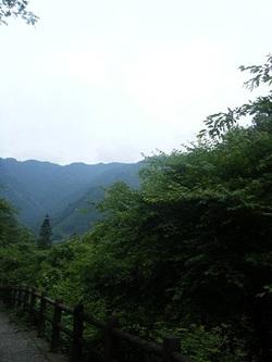 2011_06130023miyu