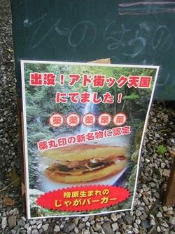 2011_06130025miyu
