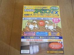 2011_07170044miyu